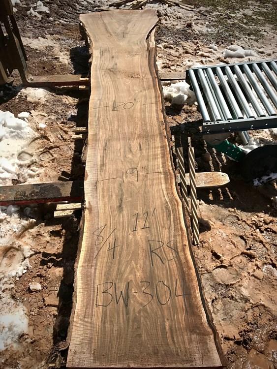 Black Walnut   Legendary PA Hardwoods